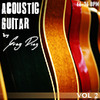 Greg Diaz Acoustic Guitar Vol 2 - 1/2 Price Sale