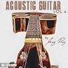 Greg Diaz Acoustic Guitar Vol 4 - 1/2 Price Sale